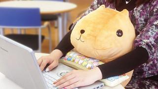 Cute pc wrist rest cushion japan 2.jpg