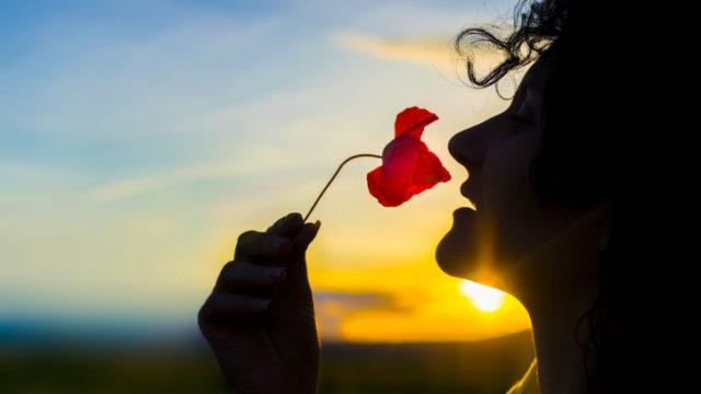 žena, kvet, západ slnka, romantika